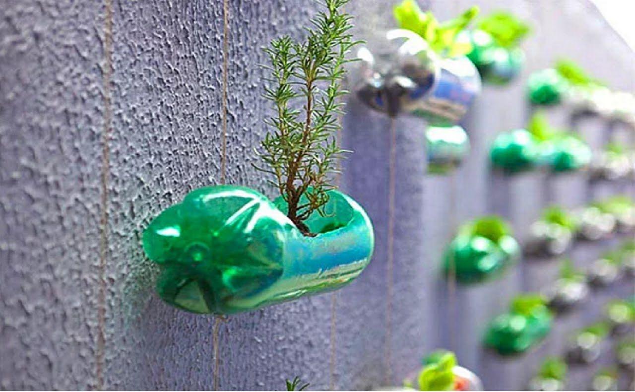 Вторая жизнь пластиковой бутылки картинки