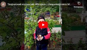 конкурс берегите природу международный для детей с дипломом