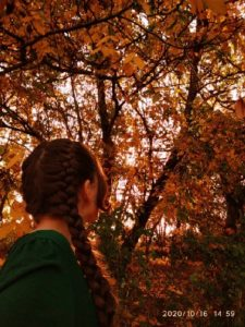 конкурс фотографий осень