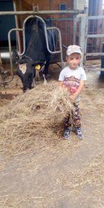 конкурс ело и сельское хозяйство